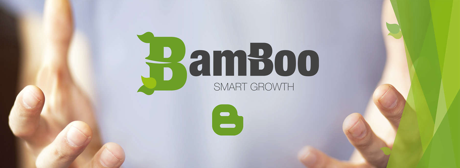 BamBoo Smart Growth Blog